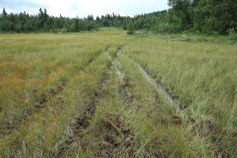 ULOVLIG: Tipset fra en turgåer førte til at dette tilfellet av ulovlig kjøring i utmark ble avdekket.