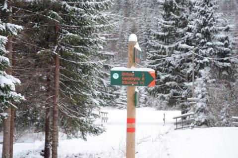 POPULÆRELØYPER:Løypenettet på Sørli er mye brukt av både fotgjengere og skiløpere. Nå skal det legges til rette for begge grupper.