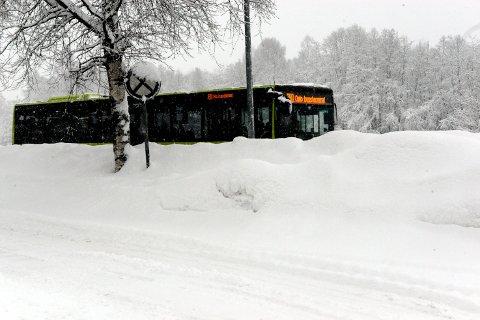 KOMMER IKKE FRAM: Bussene på linje 390 snur nå på Åneby.