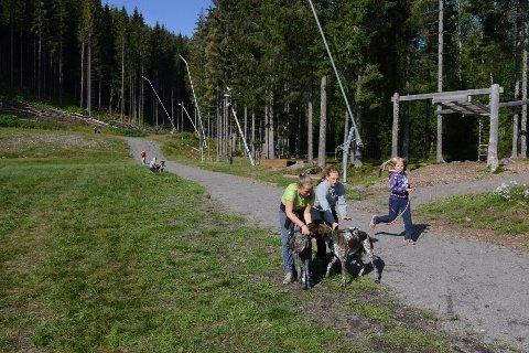 FRA HØYRE: Mari, Lina og Synne var i full gang med lek med hundene når Varingen var på besøk