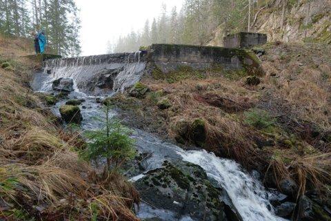 RIVINGSTRUET: Fra søndagens befaring ved Øvre Ryggevann. Dammen hever vannstanden med rundt fem meter, blir det sagt.