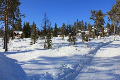 Å melde flytting til hytta kan fort straffe seg økonomisk. Foto: Øyvind Holmstad