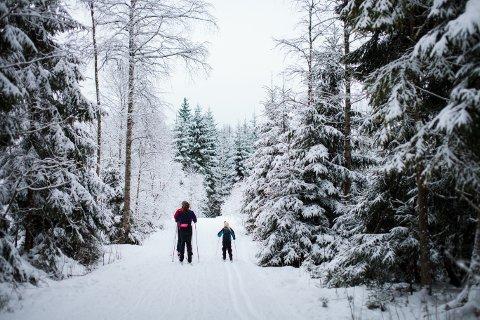 KAN IKKE KJØRE: Foreløpig har lagene i Vestby Skiløypeutvalg ikke fått dispensasjon for å kjøre opp skispor i utmark ved bruk av motoriserte kjøretøy.