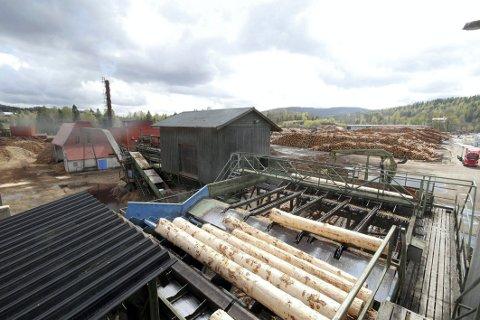 GODT ÅR: Bergene Holm AS, som eier blant annet sagbruket på Haslestad, satte produksjons- og salgsrekord i fjor.