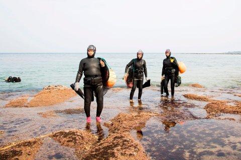 DYKKERE: Haenyeos er øyas tradisjonelle kvinnelige dykkere. Hver by har sitt eget dykkelag og et område der bare de får fange fisk og skalldyr.