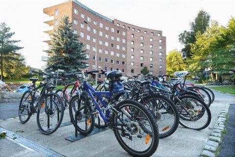 POPULÆRT: Mange er ute etter en sykkel nå når treningsstudioet er stengt og de vil komme seg ut en tur.