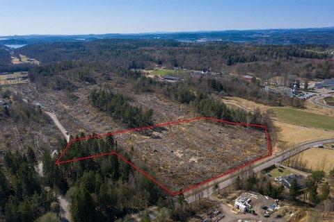 SALGSKLAR: Den 25 dekar store teigen på sydsiden av Brattåsveien er ryddet for skog, og kan i fremtiden romme flere bedriftstomter.