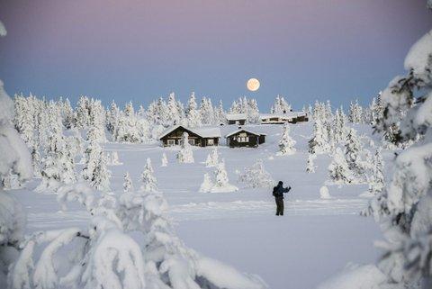 IDYLL: Nordmenn ønsker å oppleve urørt natur. Samtidig fortrenges noe av naturen for å gi plass til nye hytter.