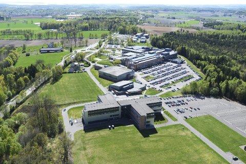 Bakkenteigen er det største undervisningsstedet i Sørøst-Norge. I fjor ble hele 31 elever mistenkt for juks.