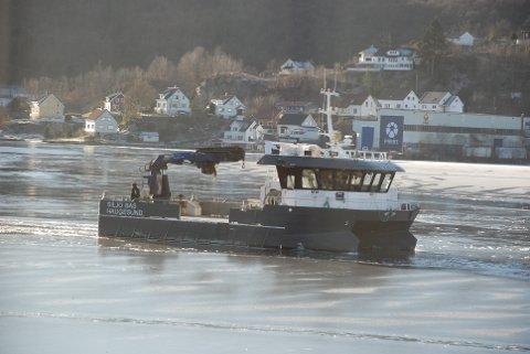 KOMMER FREM: Hjelpebåten for arbeid på oppdrettsanlegg «Siljo Bas» fra Haugesund kommer seg inn og ut på fjorden selv om isen legger seg så snart det ikke er noe aktivitet i råken inn til Eschebrygga.