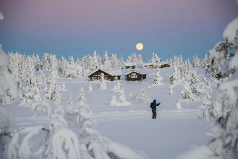 WINTER IS COMING: Mange håper på masse snø og godt skiføre, mens andre håper på minst mulig nedbør i vinter. Nå har SVTs meteorolog laget en sesongprognose for Skandinavia i perioden desember til februar.  Foto: Berit Roald / NTB scanpix