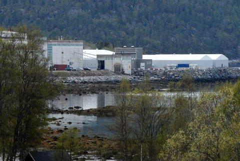 The Quartz Corps på Drag i Tysfjord.