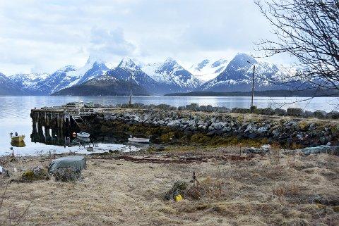 Ikke solgt: Kystverket klarer ikke å bestemme seg for hvem som skal få kjøpe fiskerihavna på Lysvold i Tysfjord.