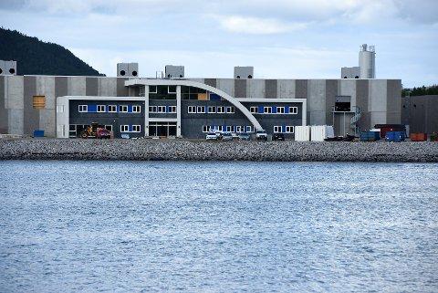 Snart ferdig: Nordlaks sitt smoltanlegg på Innhavet i Hamarøy vil stå ferdig i løpet av 2019.