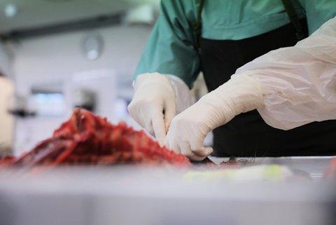 Forsker og patolog Helene Wisløff ved Veterinærinstituttet på jobb søndag. Hun obduserte flere hunder som man mistenker er rammet av den fortsatt ukjente sykdommen som har ført til at flere hunder død de siste dagene. Minst 25 hunder er registrert døde i Norge etter å ha hatt blodig diaré den siste tiden. Foto: Ørn E. Borgen / NTB scanpix