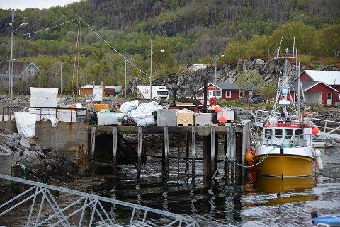 Haster: Skutvik Utvikling er utålmodig etter å få bedret forholdene for lokale fiskere.