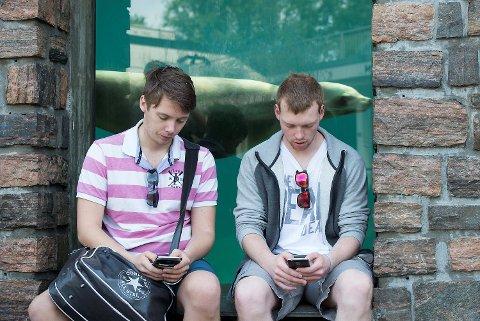 Christoffer Skår (24) og Marius Alexander Coch (21) har betalt seg inn på Akvariet for å fange sjeldne pokémon.