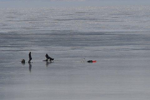 Isfisker på Fanafjorden.