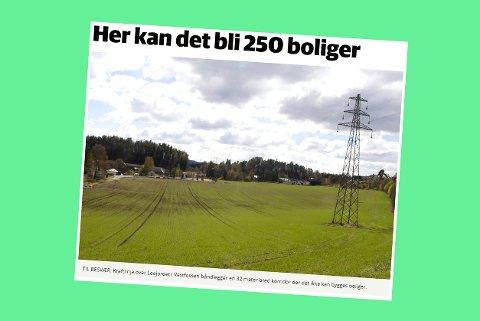 Skjermdump fra bygdeposten.no 13. juni 2017.
