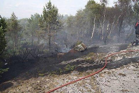 SKOGBRANN: Fra en tidligere skogbrann på Eige.