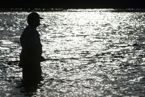 HOKKSUND 20020809: Fisketur: Laksefisker Bjørn Erik Knutsen fra Kongsberg i aksjon med tohånds fluestang i Drammenselva. Fisker i motlys.  Sportsfiske, fluefiske. Foto: Terje Bendiksby / SCANPIX