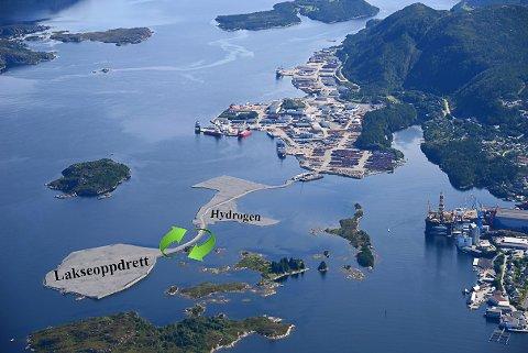 Illustrasjon frå Fjord Base med framtidas planlagde aktivitetar på den utvida basen vestover.