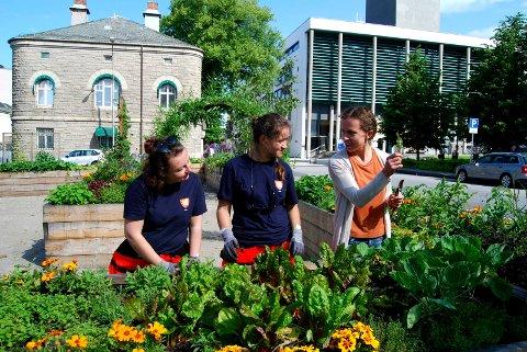 Fra venstre sommervikarene Simone Lundstrøm, Ilona Nowak og grøntforvalter Magdalena Chlosta.
