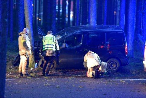Lørdag ettermiddag kolliderte en bil med et tre på Hvaler.