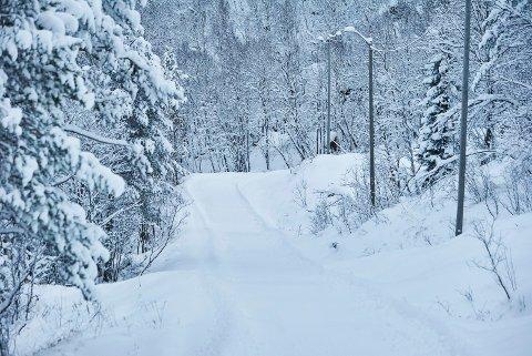 VINTERLIG: Nå er det igjen mulig å gå på ski i Kobberstadløypa og Tøttadalen. Dette bildet ble tatt i november i fjor. Foto: Kristoffer Klem Bergersen