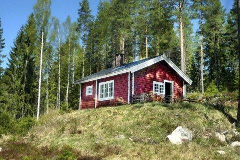 SOLGT: Skogeiendommen på nesten 5000 mål, med hytte og uthus, ble solgt for tre millioner kroner mer enn den var taksert til.FOTO: NORSK LANDBRUKSMEGLING