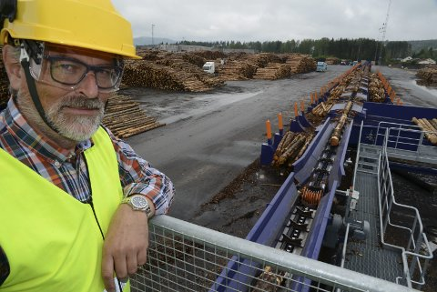 STØRST: Direktør ved Moelven Våler, Knut Berg, er del av landets største byggevareprodusent.FOTO: Sverre Viggen (ARKIV)