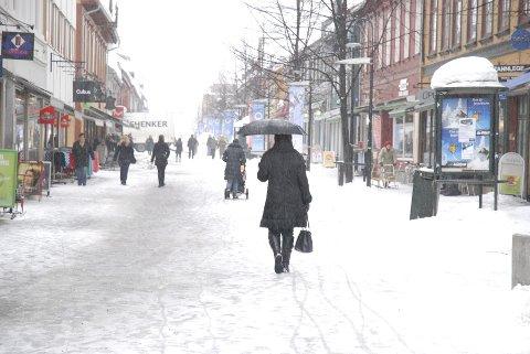Lillehammer sentrum får skryt i ny bok.