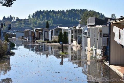 Flommen har inntatt  Bilder fra Steinvik Camping ved Moelv. Bildet er tirsdag 15. mai.