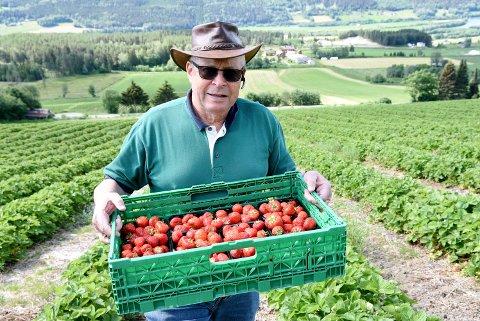Jordbærbonde Per Otto Kaurstad i Ringebu får ikke lenger levere jordbær til Coop systemet.