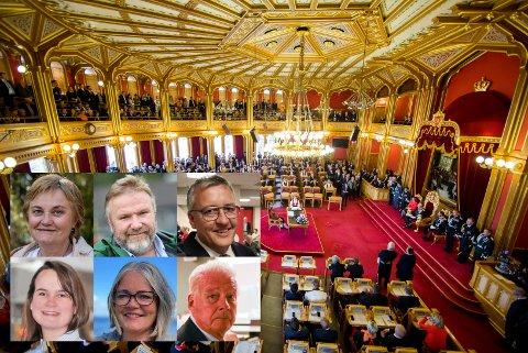 Nå er det klart hvilke saksfelt representantene fra Opplandsbenken skal jobbe med de neste fire årene.