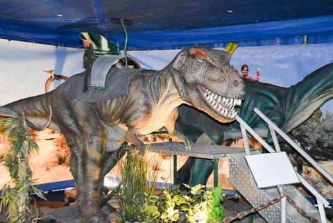 RIDBAR DINOSAUR: Tyrannosaurus Rex er en av dinosaurene som man kan ri på under dinosaurutstillingen i helga.