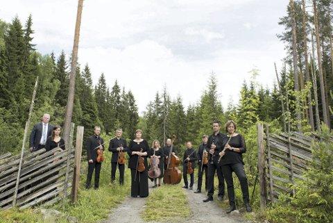 SAMARBEID: Mjøsmusikk ble etablert i 2010 og inviterer til sin åttende nyttårskonsert denne søndagen. De spiller sammen med Collegium Vocale og Gunda-Marie Bruce i Hamar kulturhus.