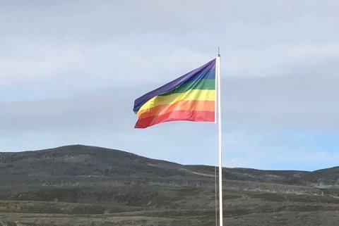 BRA, MEN... : Pride-flagget er hengt opp ned i Lakselv.
