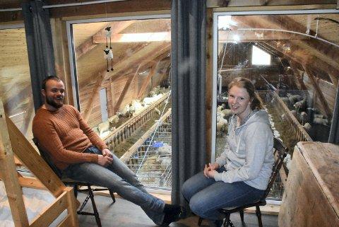 PANORAMAUTSIKT: Fra leiligheten i toppen av den ene enden av sauefjøset, her Jon Anders Hammer og Siri Mette Wold fri utsikt mot sauene. Leiligheten kan leies.