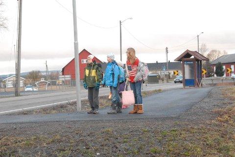 Farli skolevei. Mister skoleskyss. ¬ Selma Schøyen Løkken (blå), Mina og Filip Borgen.