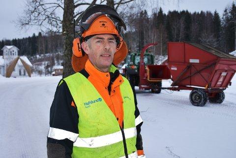 FELLER TRÆR: Martin Skugstad fra Bygdeservice var på plass for å fjerne de råtne trærne i bjørkealleen ved Eidsverket.