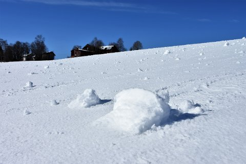 På dette jordet på Løken, der lysløypa starter ved Høland stadion, er det en mengde snøballer etter nattens vind og snøvær.