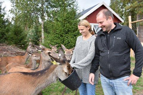 – Vi er veldig takknemlige for at så mange besøker hjorteparken, sier Anette og Torleif Mørk. Foto: Trym Helbostad