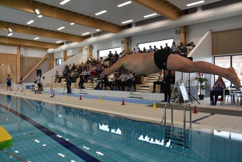 Etter at svømmehallforkjemper Finn Herlofsen stupte ut i Bjørkebadet 1. november 2018, er det registrert over 30.000 besøk. Arkivfoto: Trym Helbostad