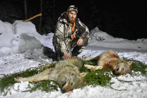 Per-Steinar Slang er talsperson for fellingslaget i Aurskog-reviret og rovviltansvarlig i NJFF Akershus. Her med de to tispene som ble felt 1. januar.