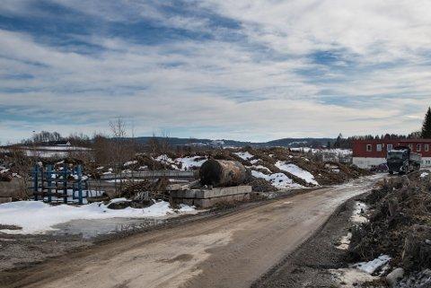 RISIKERER GEBYR: Ole Kristian Romsaas har lagret disse massene på egen eiendom på Frogner. Nå krever kommunen full opprydning. Ellers risikerer bonden et gebyr på 15 000 kroner.