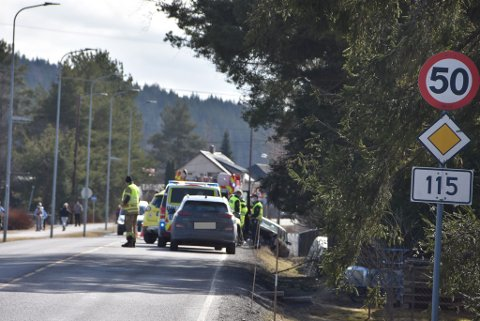 Alle nødetatene rykket ut til ulykken langs fylkesvei 115 gjennom Bjørkelangen søndag.