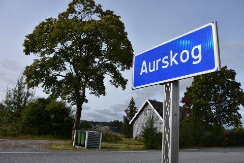 Lokalpolitikerne sier ja til å starte planarbeidet for å utvikle tomta på Søndre Bogstad, noe som kan gi et 30-talls leiligheter. Foto: Trym Helbostad