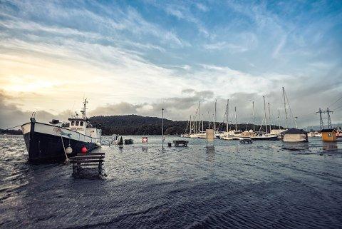 Dette lesarbildet er tatt av John Asle E Hansen i desember 2017. Frå båthamna på Husnes.