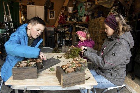 Ivrige: Søskena Emil (8), Ellie (3) og Elvira (11) lagar inseksthotell i garasjen til bestefar og bestemor i Uskedalen.